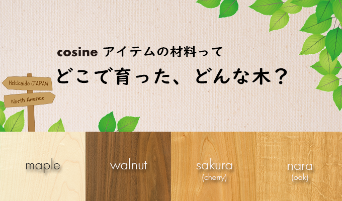 A wooden toy that grows by touching cosine TOY